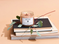 An image of an Evil Queen candle (Old Soul) atop a stack of books and a eucalyptus sprig on a pink, peachy background.
