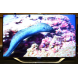 Samsungunes8000front