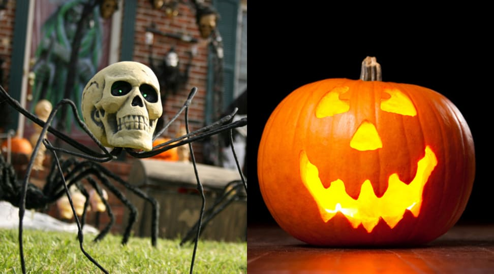 Skeleton spider and Halloween carved pumpkin