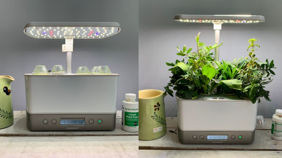 The Aerogarden in two shots, the left is empty and the right shows the plants fully grown one moth later