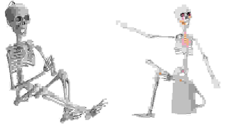 """Prextex 19"""" Posable Halloween Skeleton"""
