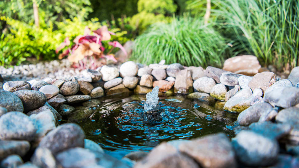 The Best Water and Garden Pumps