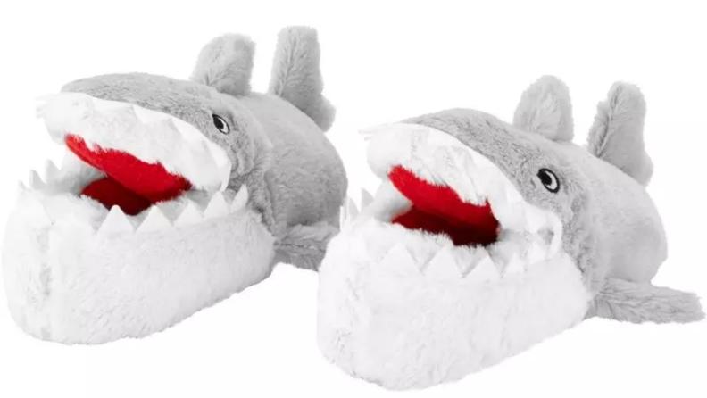 Chaussures de requin