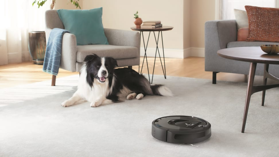 Robot vacuums, like the popular iRobot Roomba or Neato BotVacs, are a helpful cleaning tool, but they're not necessarily right for every home.