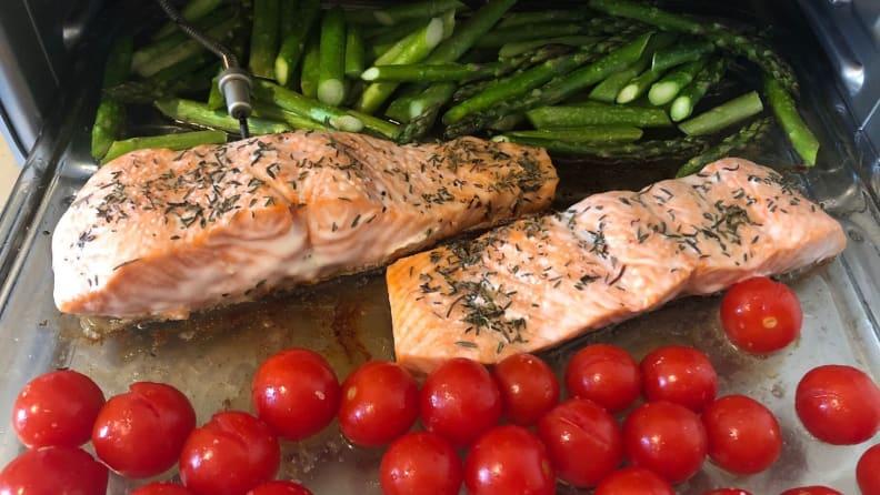 Brava Oven - Salmon
