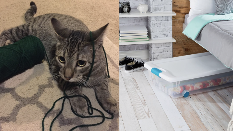 Cat playing with yarn and secure storage solution