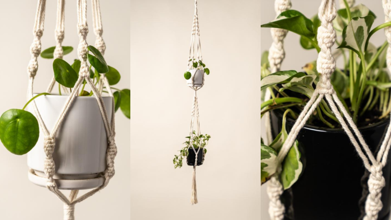 Three images of hanging green plants in white and black pots.