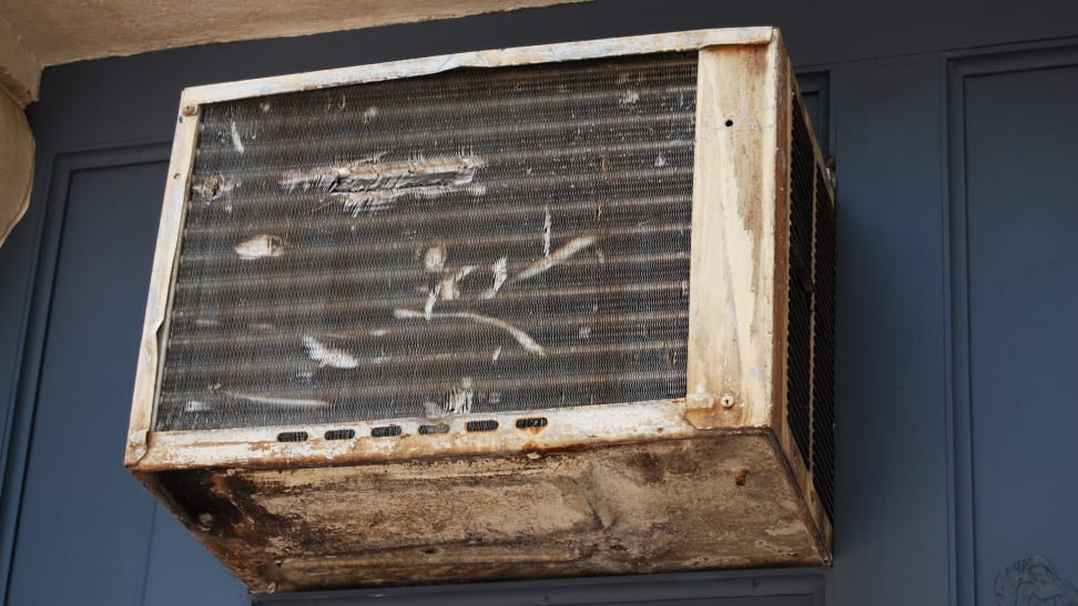 Your air conditioner may be full of mold and bugs!