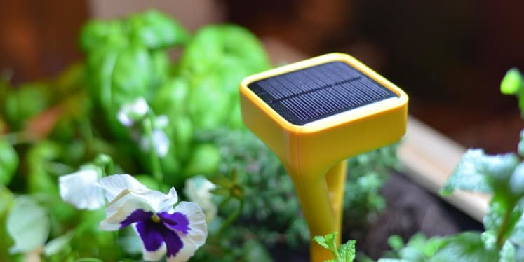 edyn knows what your garden needs - Edyn Garden Sensor