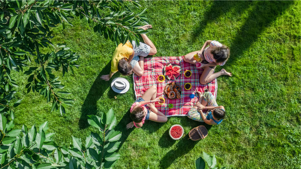 What to bring to a picnic? Here are some picnic ideas.