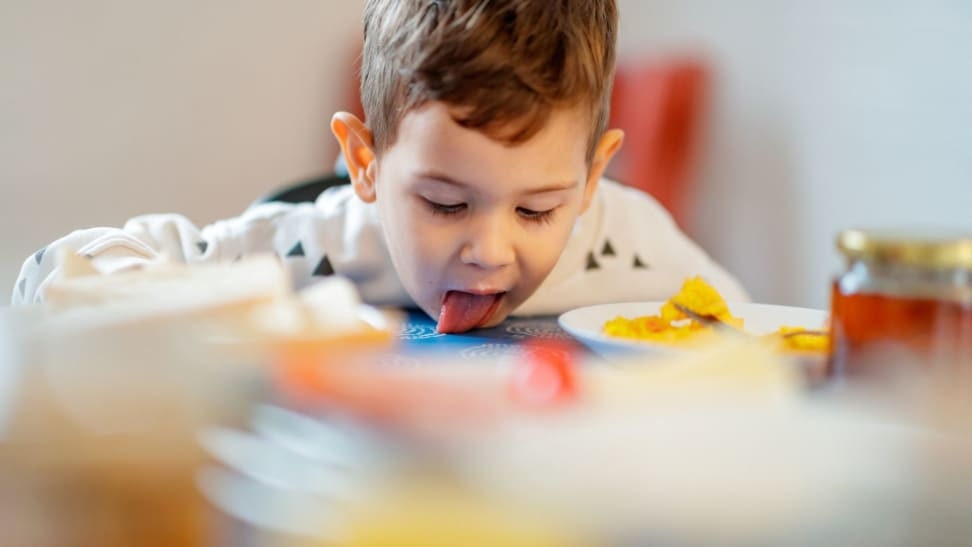 Cute little 2.5 year old boy licking some spilled milk of dining table