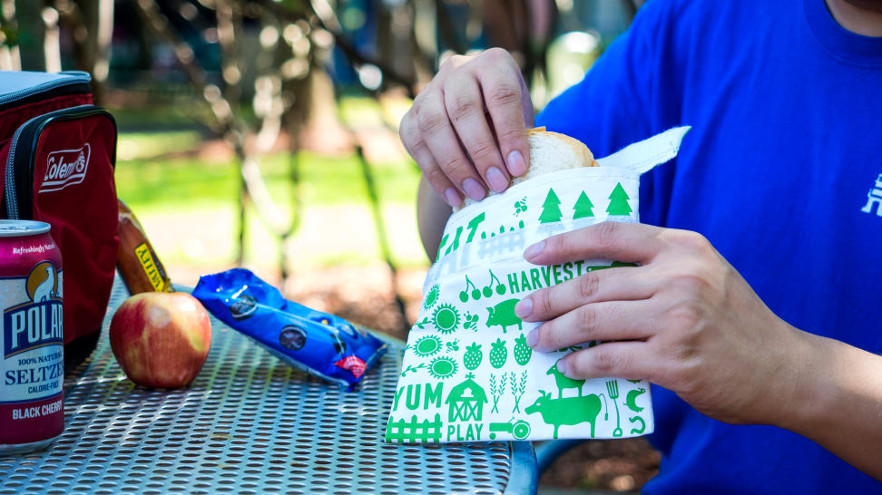 Image result for Reusable Sandwich Wraps: Lunchskins Reusable 2-Pack Bag Set