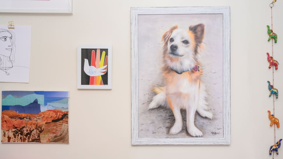 Paint Your Life dog portrait on a wall with other artwork