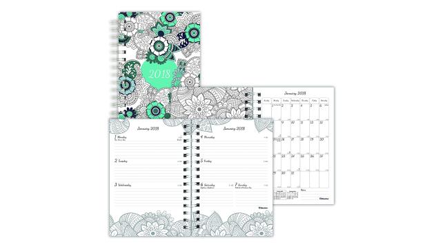 Blueline 2018 DoodlePlan Color-In Planner