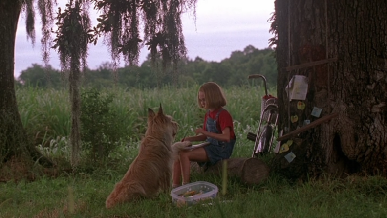A still from 'Because of Winn-Dixie' featuring the dog and the girl sitting together in a backyard.