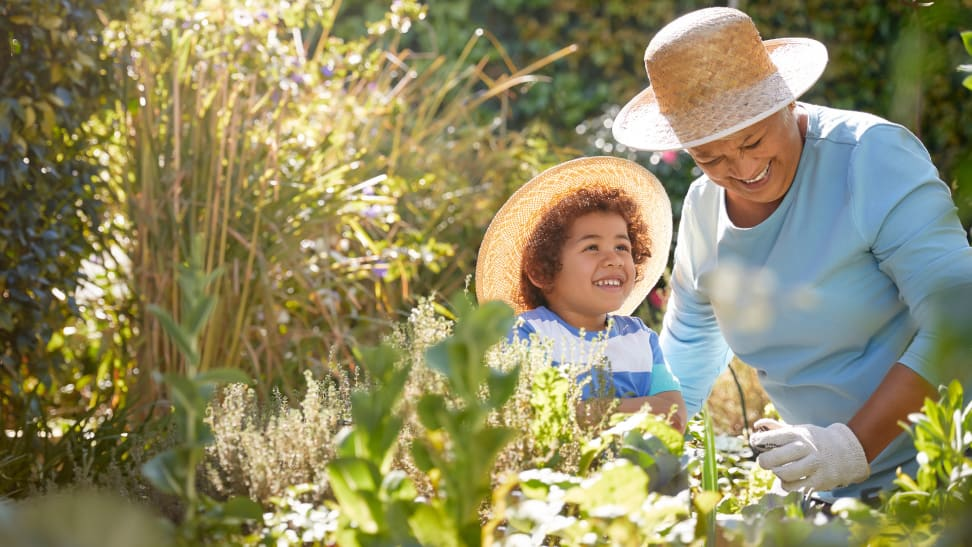 Grandmother and child gardening outdoors in a vegetable garden