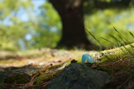 Robin Egg Sample