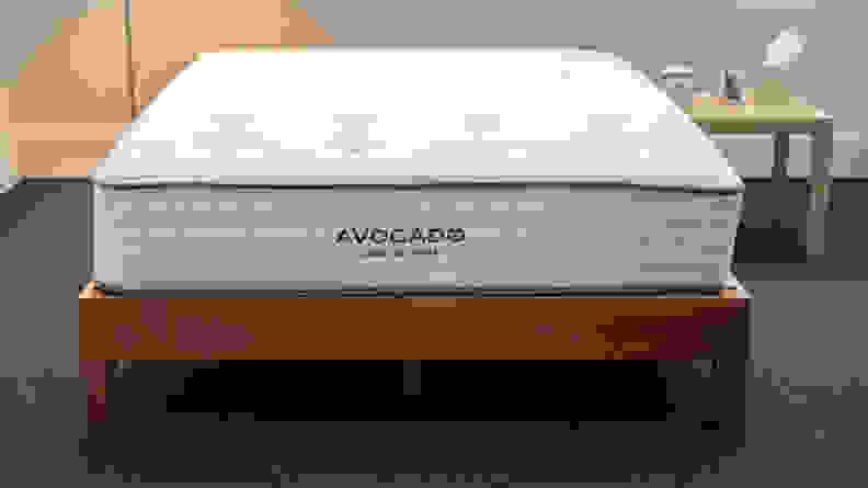 Avocado ethics
