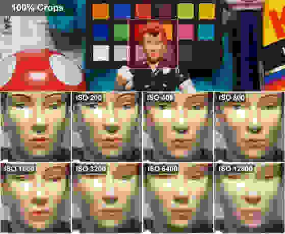 G5 X Rosie Crop