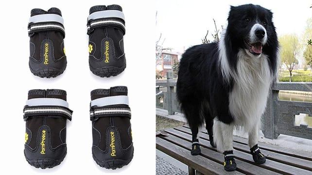 Maxshop Dog Boots
