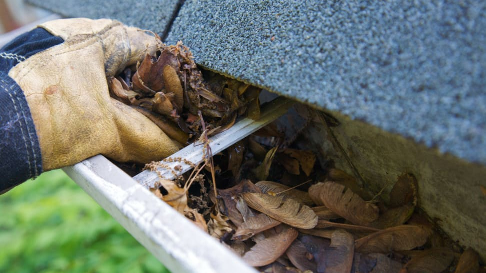 Person wearing work gloves scooping out leaves and debris from gutter