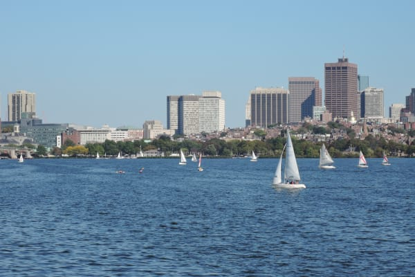 A sample photo of sailboats taken by the Nikon Coolpix P340.