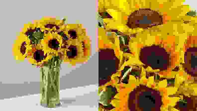 Honeybee Sunflowers