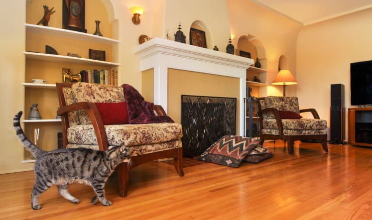 Why Refinishing Your Hardwood Floors Is A Smart Move