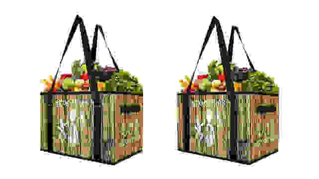 Earthwise Reusable Grocery Bag Set