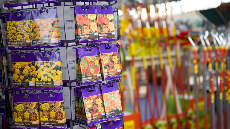 Seed packets in a hardware store