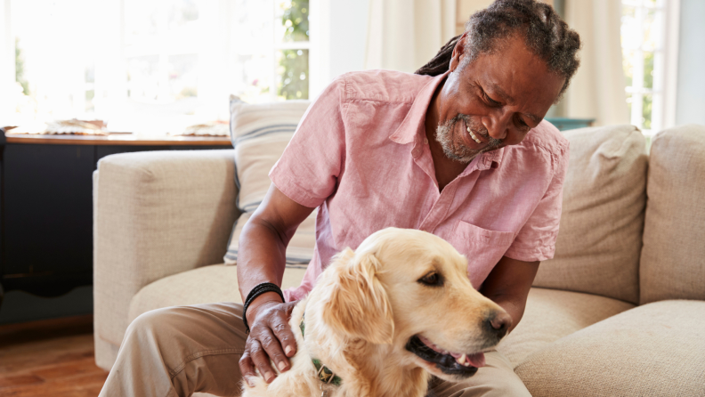 Person smiling while petting golden retriever dog.