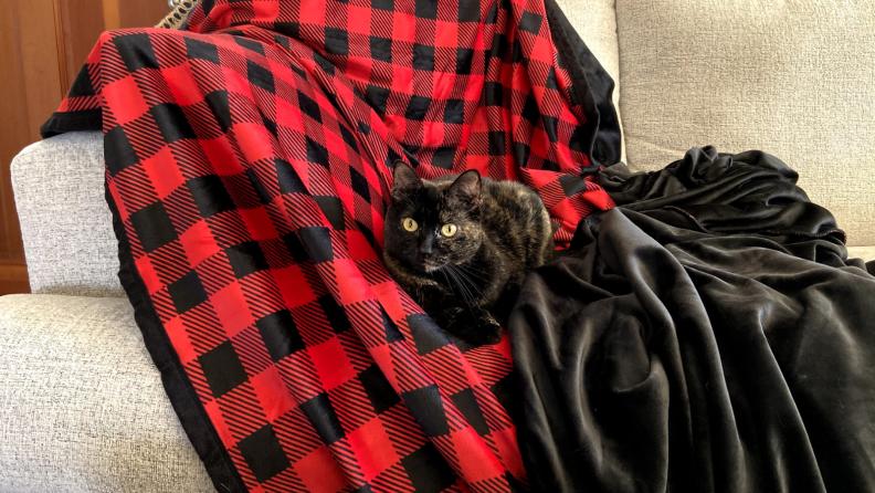 Echo on blanket