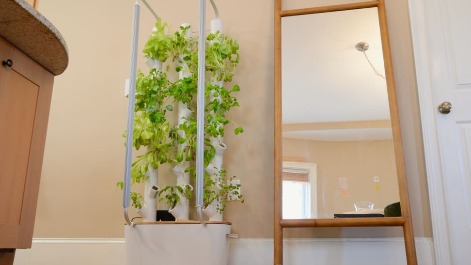 Gardyn, a vertical hybriponic indoor growing system, is in the center of the image with vegetable plants growing from the columns. There's a mirror to the left of the device.