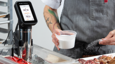 Breville PolyScience sous vide immersion circulator