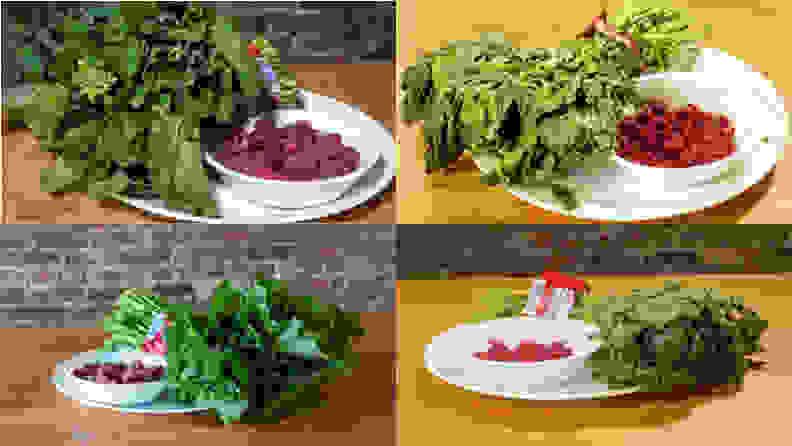 Fridge Fresh Testing Images