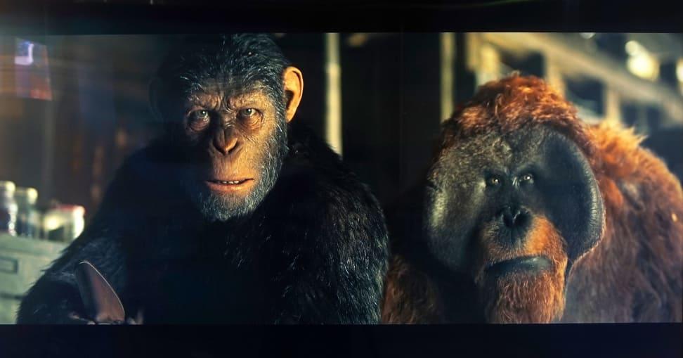 MU9000-Apes-3