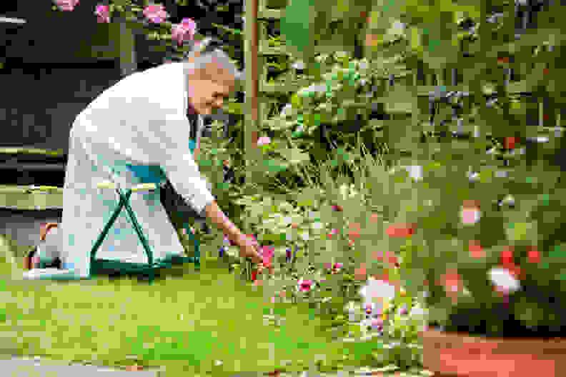GardeningKneeling