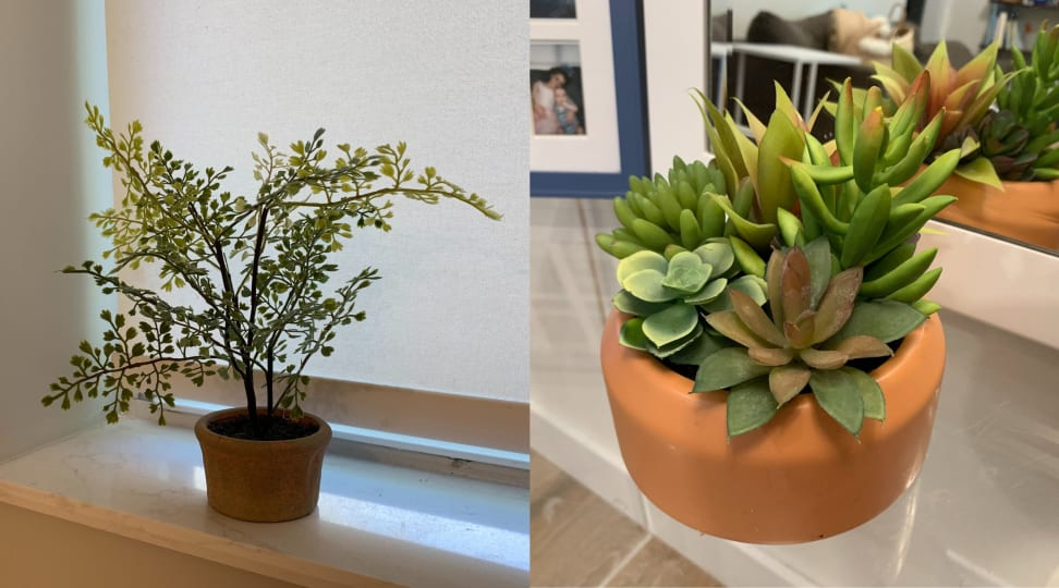 Side by side of indoor fake plants