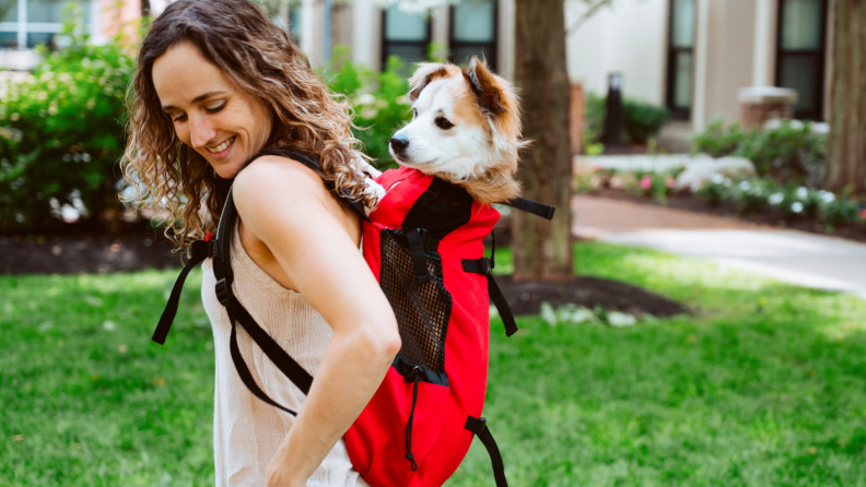 An image of a young woman carrying a dog in a backpack.