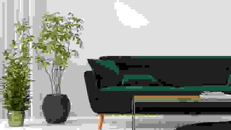 Dark-green-couch