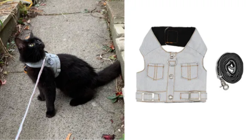 An image of a cat wearing the vest harness alongside a flatlay of the same harness.