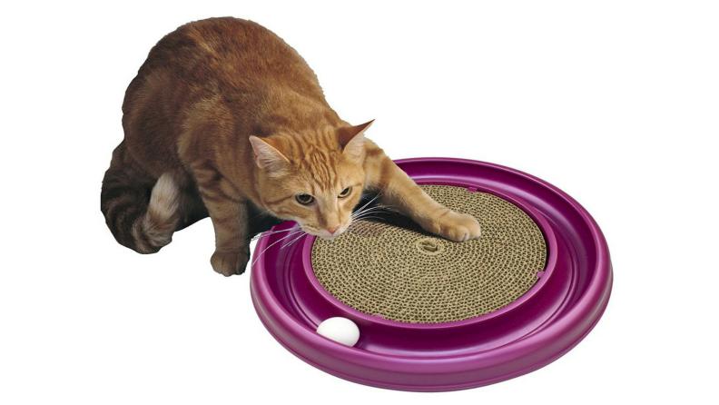 Cat scratcher toy