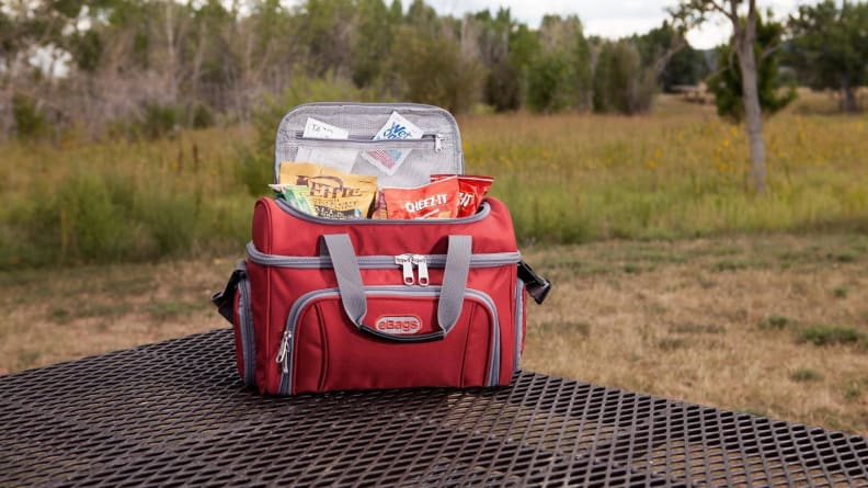 eBags Travel Cooler