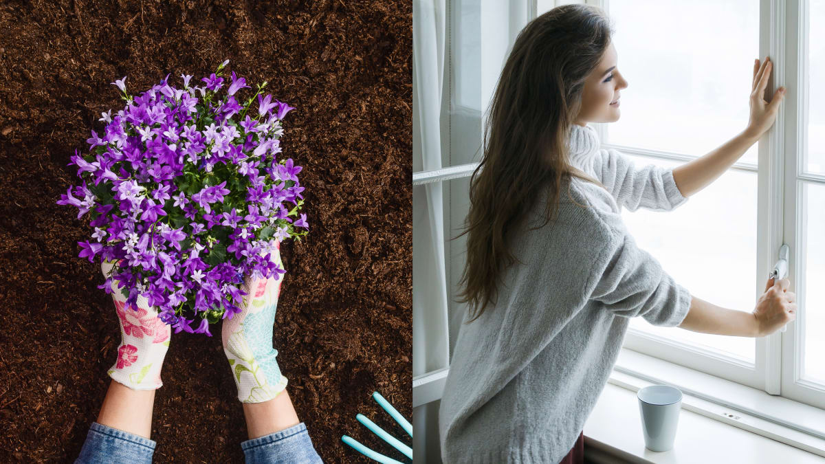 10 simple things you can do to survive allergy season