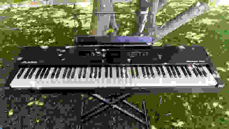An Alesis Recital Pro sits on the lawn of our writer's treed backyard