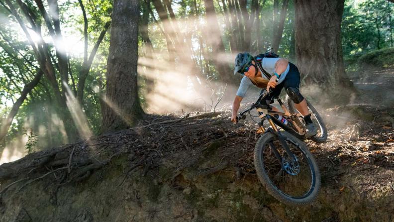 Person biking through forest.