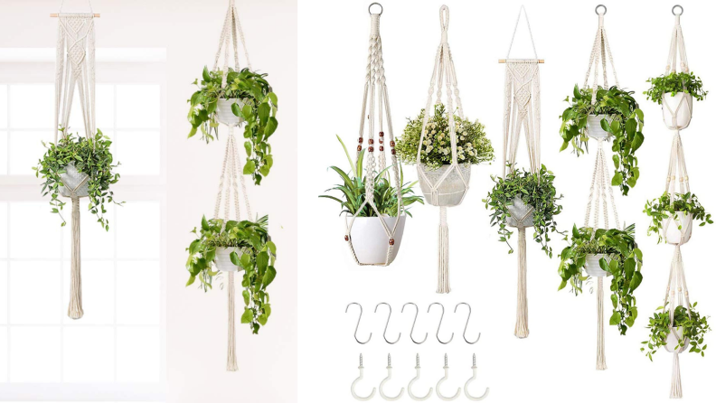 An assortment of white macrame hanging pots house plants.