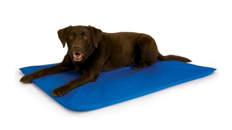 K&H Cool Bed III Pet Bed