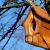 Nikon coolpix l840 review sample birdhouse