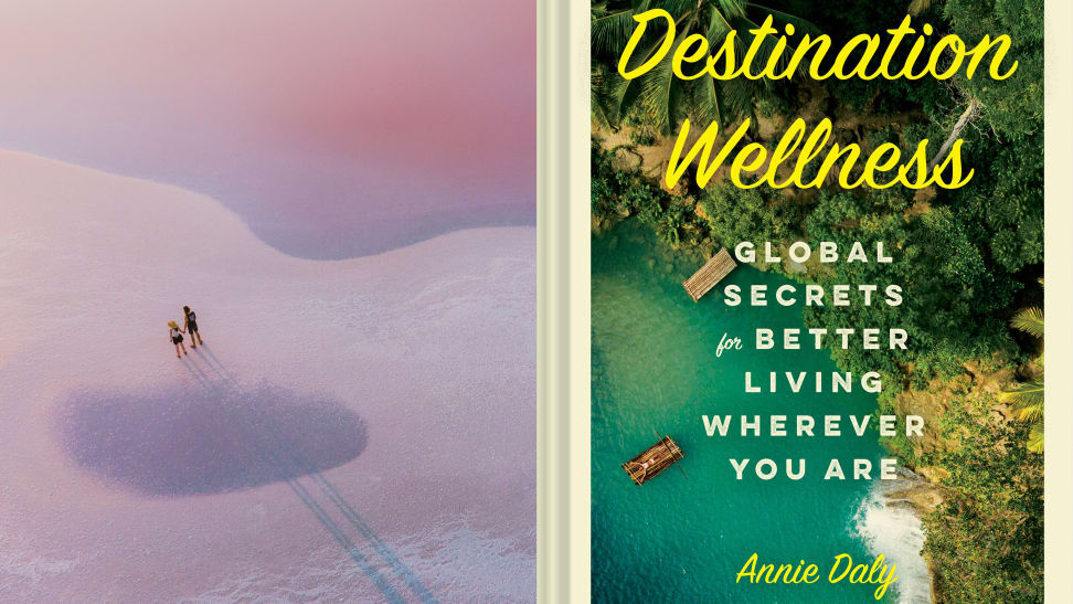 The cover of the book Destination: Wellness by Annie Daly